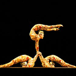 Dance School North Shields Why We Love Cirque du Soleil Blog Image