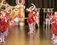 Dance-School-North-Shields-Playhouse-Show-Feb-2020-Image-22
