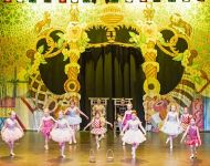 Dance-School-North-Shields-Playhouse-Show-Feb-2020-Image-21
