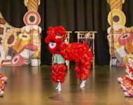 Dance-School-North-Shields-Playhouse-Show-Feb-2020-Image-23