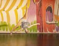 Dance-School-North-Shields-Playhouse-Show-Feb-2020-Image-26